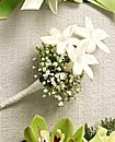 Stephanotis and Babies Breathe Boutonniere