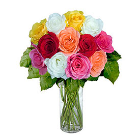 Same Day Flower Delivery - Dozen Assorted Color Medium Roses