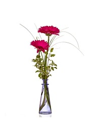 Two Gerbera Bud Vase