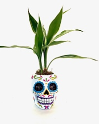 Day of The Dead Head Planter