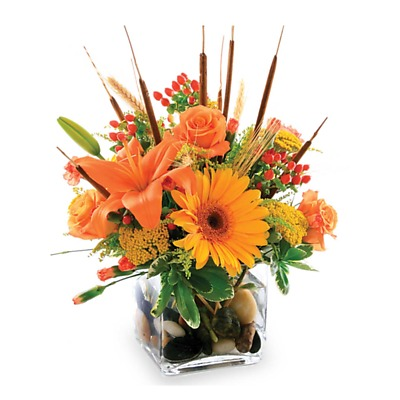 Same Day Flower Delivery - Splash of Autumn