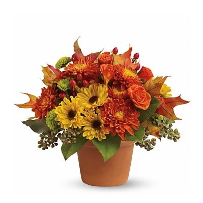 Same Day Flower Delivery - Fall Arrangement