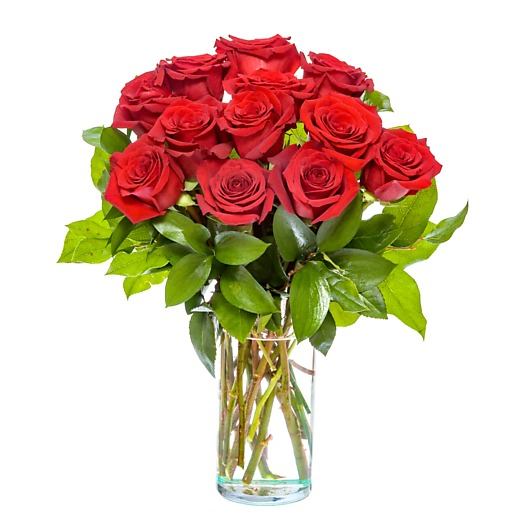 Dozen Medium Stem Red Roses