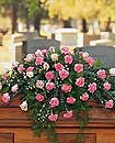 Carnation Rose Casket Sp