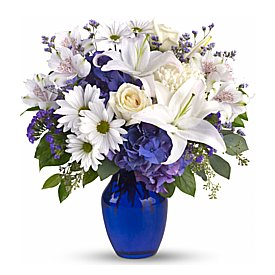 Same Day Flower Delivery - blue hydrangea